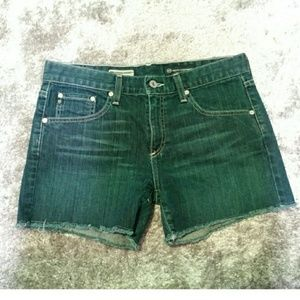 Adriano Goldschmied the Gemma jean shorts size 28
